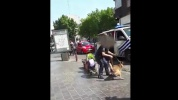 Chien policier par Sudinfo.be - Dailymotion.mp4