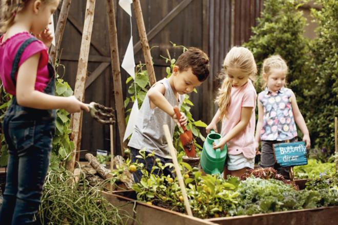Réduisons nos déchets organiques