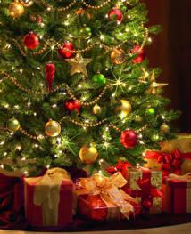 Comment donner de la vie à votre sapin de Noël ?