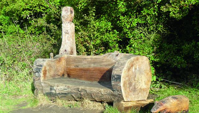 Un tronc d'arbre, 4 possibilités de DIY
