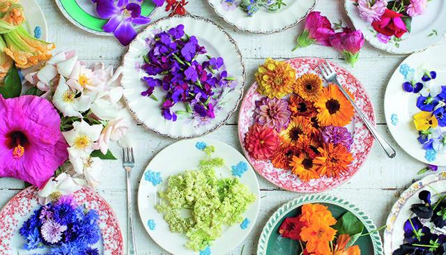 Une cuisine colorée avec les fleurs comestibles !