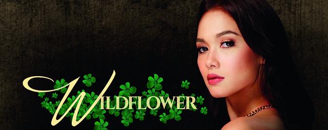 Télénovélas - Wildflower - épisodes 05 à 08