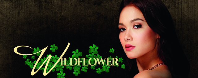Télénovélas - Wildflower - épisodes 89 à 92