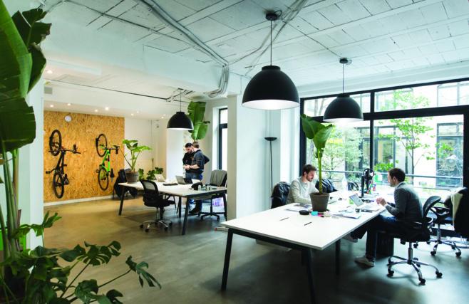 Des plantes pour réduire l'absentéisme au bureau