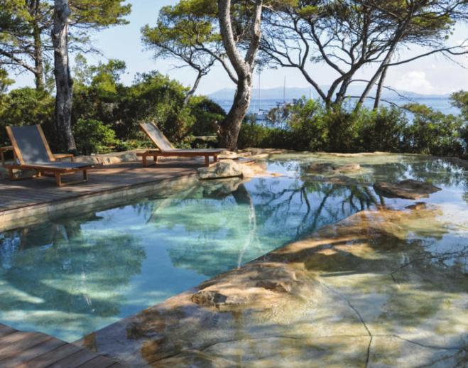 Six points à connaître avant de végétaliser les abords d'une piscine