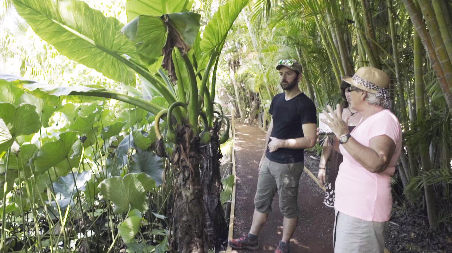 Visite du jardin d'Eden