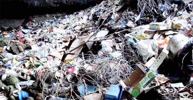 Au cœur du traitement des déchets
