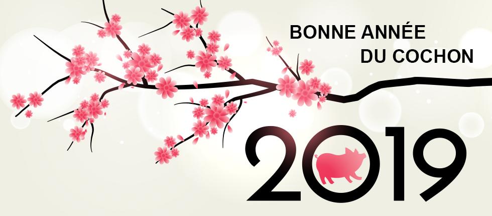 Bonne Année du Cochon