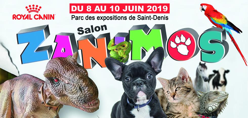Salon Zanimos 2019