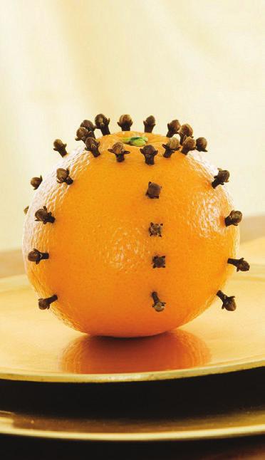 7 répulsifs naturels contre les insectes - Quels aliments font fuir quels insectes ?