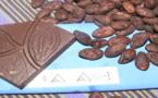Renaissance d'un cacao bio d'excellence à La Réunion