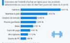 Confinement, le top des produits les plus recherchés sur internet