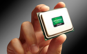 LES 8 CŒURS D'AMD