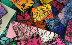 "Exposition graffiti de l'artiste ""VAST"""