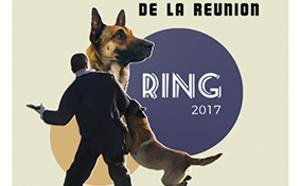 Coupe et le championnat de la Réunion de ring (chien de mordant)