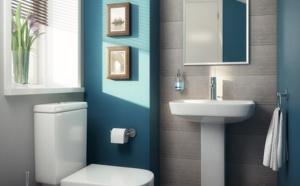 Les toilettes… une pièce souvent oubliée !