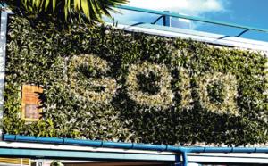 Gaïa ou la première pub végétale à La Réunion