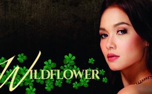 Télénovélas - Wildflower - épisodes 29 à 32