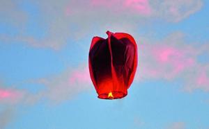 Pas de lanterne volante pour les fêtes ?