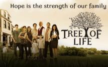 Télénovéla Tree of life: Episodes 1 à 6