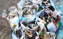 Lancement du projet Kolportaj pour la lutte contre la prolifération des déchets sauvages à La Réunion