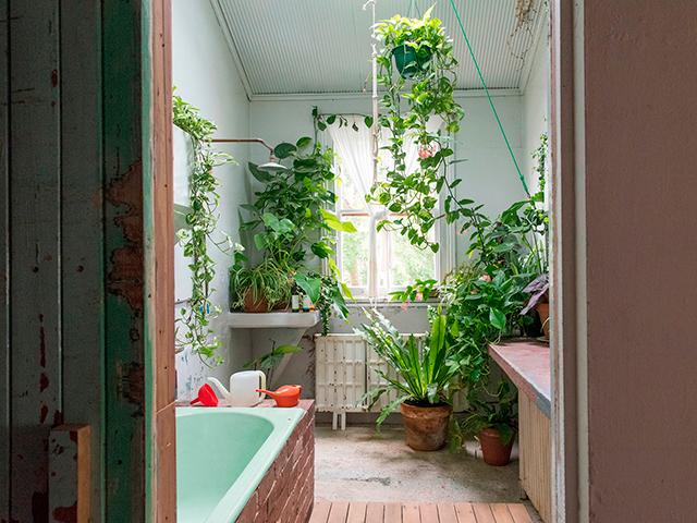 du vert dans chaque pi ce. Black Bedroom Furniture Sets. Home Design Ideas